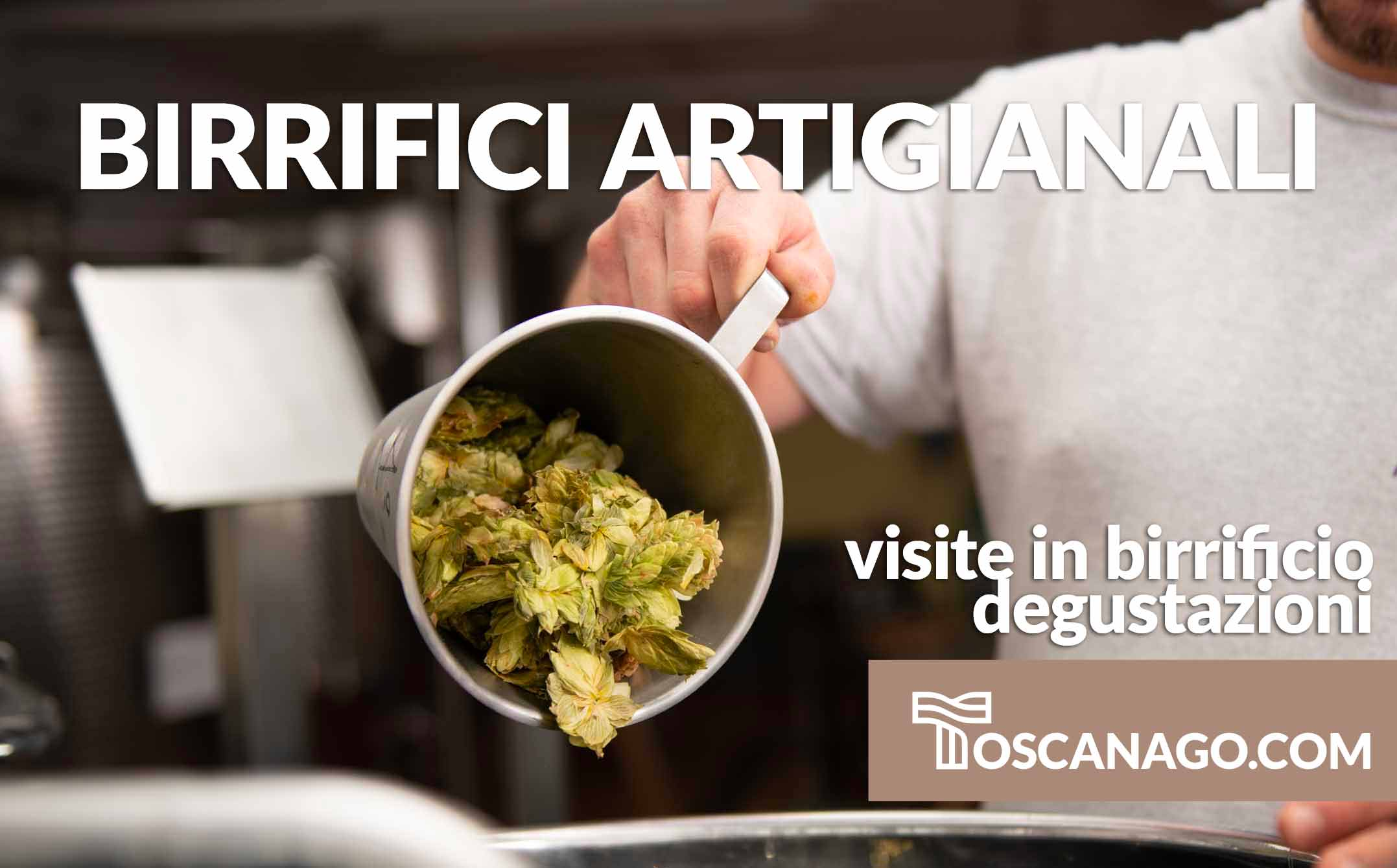 visite guidate in birrificio